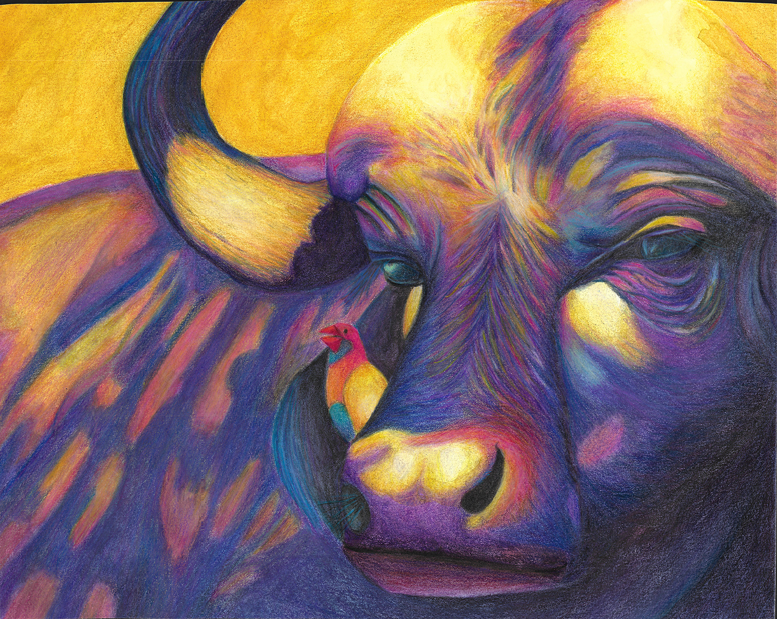 water buffalo painting